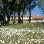 Fachada de la residencia del Pilar con flores