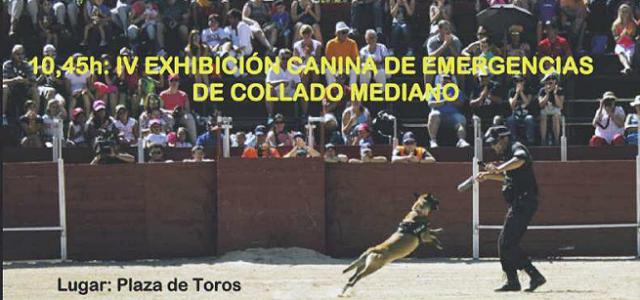IV Exhibición canina de Collado